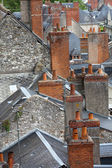 Roofs of Blois town, Loire valley, France — Foto Stock