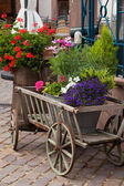 Old Wooden cart with plants in pots — Stock Photo