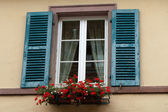 Window of a house in Eguisheim, Alsace, France — Stock Photo