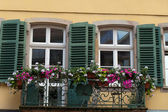 The window with shutters and flower pots — Stock Photo