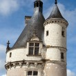 Stock Photo: Castle of Chenonceau.