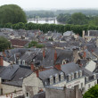 Roofs of Chinon town, Vienne valley, France — Stock Photo