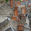 Stock Photo: Roofs of Blois town, Loire valley, France