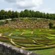 Stock Photo: Subtle, sophisticated and full taste garden and chateau LChatonniere near Villandry. Loire Valley