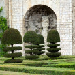 Gardens and Chateau de Villandry  in  Loire Valley in France — Stock Photo #42467539