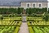 Potager au château de villandry. vallée de la loire, france — Photo