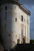 Chateau de Loches in Loire Valley, France — Stock Photo