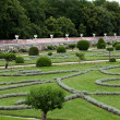 Gardens at Chateau Chenonceau — Stock Photo #42740215