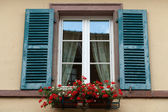 Window of a house in Eguisheim, Alsace, France — Stok fotoğraf