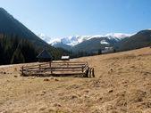 Chocholowska valley in West Tatras, Poland — Stock Photo