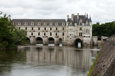 Garden and Castle of Chenonceau — Foto de Stock