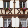 Timbered houses in the village of Eguisheim in Alsace, France — Stock Photo #47618135