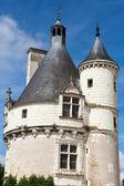 κάστρο του chenonceau. — Stockfoto