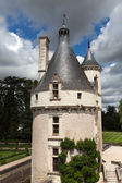 Castelo de chenonceau. — Foto Stock