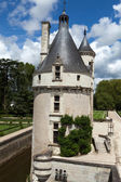 Castle of Chenonceau. — ストック写真