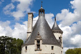 Castle of Chenonceau. — 图库照片