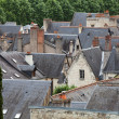 Roofs of Chinon town, Vienne  valley, France — Stock Photo #49152247