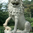 Stone chinese lion — Stock Photo