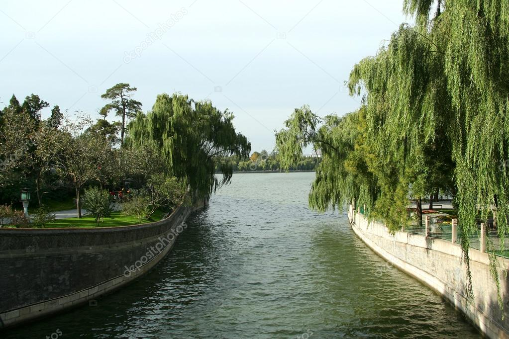 Lake and willows in China park — Stock Photo #12468176
