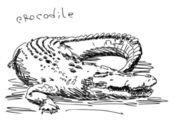 Hand drawn crocodile — Vecteur