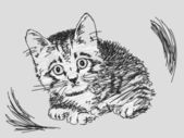 手描き下ろしキティ — ストックベクタ
