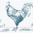 Stock Vector: Hand drawn cock Vector