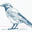 Hand drawn crow Vector — Stok Vektör