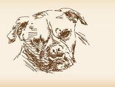 Perro dibujado a mano — Vector de stock