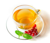 Glass Cup of Tea with Cranberries and Mint Isolated on the White Background — Stock Photo
