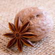 Walnuts and Star Anise on Burlap Background — Stock Photo