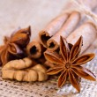 Walnuts, Star Anise and Cinnamon on the Burlap Background — Stock Photo
