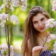 Young Beautiful Woman with Pink Sakura Flowers — Stock Photo #25407505