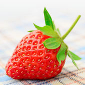 Fresh Sweet Strawberries on the Table Cloth — Stock Photo