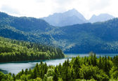 Alpsee Lake in the Forest and Alps Mountains. Bavaria, Germany — Stock Photo