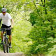 Cyclist Riding the Bike on the Trail in the Forest — Stok fotoğraf