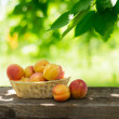 Ripe Tasty Apricots in the Basket on the Old Wooden Table — Stock Photo