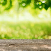 Empty Wooden Table in the Garden with Bright Green Background — Stock Photo