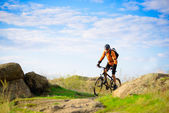 Cyclist Riding the Bike on the Beautiful Mountain Trail — Stock Photo