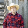 Stock Photo: Skeptical Cowboy