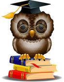 Wise owl on a stack of books — Stock Vector