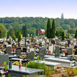 Catholic cemetery — Stock Photo #13477304