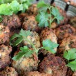 Stock Photo: Parsley balls with white pepper and salad