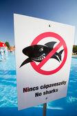没有鲨鱼 — 图库照片