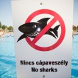 Stock Photo: No sharks