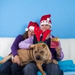 Happy couple celebrating christmas — Stock Photo