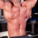 Bodybuilder training his back — Stock Photo