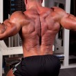 Bodybuilder training his back — Stock Photo #18174755