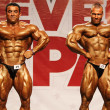 Bodybuilders posing - Stock Photo