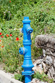 Fire hydrant in nature — Stock Photo