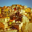 Manarola, Cinque Terre, Italy — Stock Photo